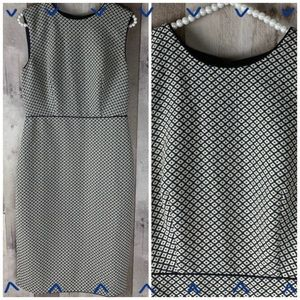 Ann Taylor business dress blue & cream size 6